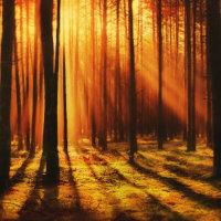 Begleitung durch die Herbsttagundnachtgleiche, Mabon, durch Schamane Gerhard Zirkel